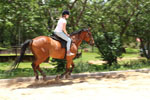 fundraising ideas horseback riding